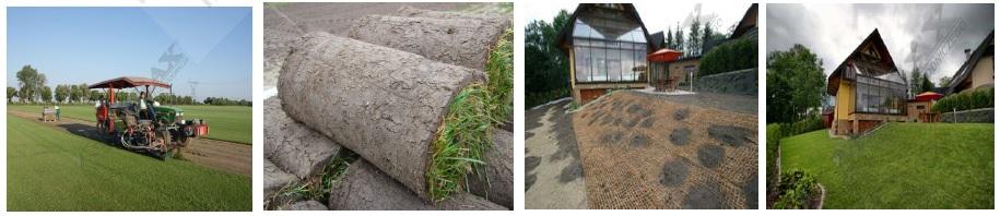 Trawnik z rolki - plantacja, rolki trawy, teren przed położeniem i teren po ułożeniu trawnika z rolki.